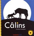 Antoine Guilloppé - Câlins. 1 CD audio MP3