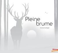 Antoine Guilloppé - Pleine Brume.
