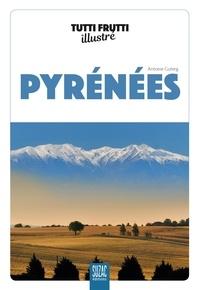 Antoine Guterg - Tutti frutti illustré Pyrénées.