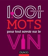 Antoine Lebègue - 1001 mots pour tout savoir sur le vin.