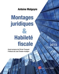 Montages juridiques et habileté fiscale.pdf