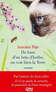 Antoine Paje - Du haut d'un brin d'herbe, on voit bien la Terre.