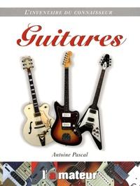 Antoine Pascal - Guitares.