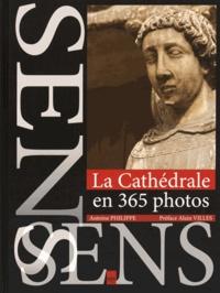Antoine Philippe - La cathédrale de Sens en 365 photos.