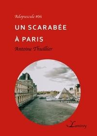 Antoine Thuillier - Un scarabée à Paris.