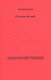 Antoine Wauters - Césarine de nuit.