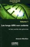 Antonin Morillon - Les longs ARN non codants.