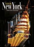 Antonio Attini et Peter Skinner - New York vu du ciel.