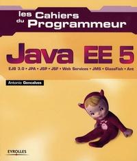 Java EE 5.pdf