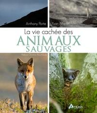 Antony Porte et Yvan Martin - La vie cachée des animaux sauvages.