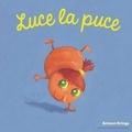 Antoon Krings - Luce la puce.