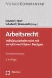 Arbeitsrecht - Individualarbeitsrecht mit kollektivrechtlichen Bezügen.
