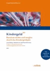 Arbeitsuchende und ausbildungsplatzsuchende Kinder 2013 - Rundum sicher und sorglos durch das Kindergeldjahr. Mit Online-Zugang und Online-Seminar.