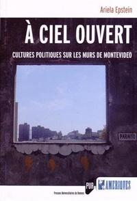 Ariela Epstein - A ciel ouvert - Cultures politiques sur les murs de Montevideo.