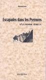 Armengaud - Escapades dans les Pyrénées d'un homme sérieux.