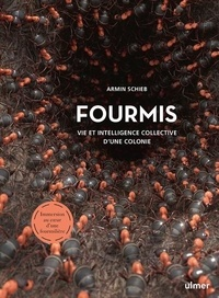 Armin Schieb - Fourmis - Vie et intelligence collective d'une colonie.