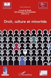 Arnaud de Raulin et Sidi Mohamed Ould Abdallahi - Droit, culture et minorités.