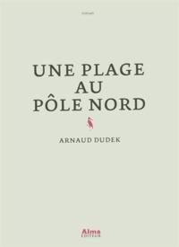 Arnaud Dudek - Une plage au pôle nord.