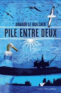 Arnaud Le Guilcher - Pile entre deux.