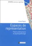 Arnaud Plagnol - Espaces de représentation - Théorie élémentaire et psychopathologie.