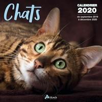 Artémis - Calendrier Chats - De septembre 2019 à décembre 2020.