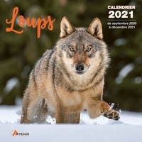 Artémis - Calendrier Loups.