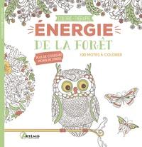 Artémis - Energie de la forêt - 100 motifs à colorier.