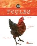 Artémis - Poules.