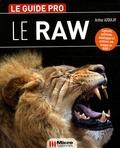 Arthur Azoulay - Le format Raw.