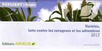 Accentsonline.fr Dépliant sorgho - Variétés, lutte contre les ravageurs et les adventices Image