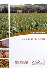 Sorgho grain : culture et utilisation -  Arvalis - Institut du végétal | Showmesound.org