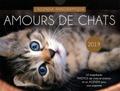 Atelier Saje - Amours de chats - L'agenda panoramique.
