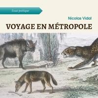 Nicolas Vidal - Voyage en métropole.