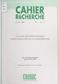Aude Collerie de Borely et Jean-Luc Volatier - La place des biens durables dans l'évolution de la consommation - Motivations d'achat des biens durables.