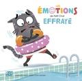 Audrey Bouquet et Fabien Lambert - Les émotions de Petit Chat effrayé.