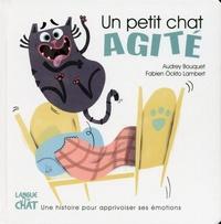 Audrey Bouquet et Fabien Lambert - Un petit chat agité.