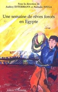 """Audrey Estermann et Nathalie Soula - Une semaine de rêves forcés en Egypte - Récit écrit par les élèves des classes de sixième à projet du collège """"Les Amonts""""."""