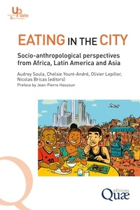 Audrey Soula et Chelsie Yount-andré - Eating in the city - Socio-anthropological perspectives from Africa, Latin America and Asia.