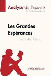 Aurélie Bontout-Roche et  lePetitLitteraire - Les Grandes Espérances de Charles Dickens (Analyse de l'oeuvre) - Comprendre la littérature avec lePetitLittéraire.fr.