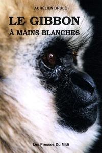 Le gibbon à mains blanches.pdf