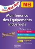 Aziz Bekri et Ludovic Pigeyre - Bac Pro MEI, maintenance des équipements industriels - 2nde, 1re, Tle.