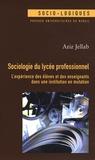 Aziz Jellab - Sociologie du lycée professionnel - L'expérience des élèves et des enseignants dans une institution en mutation.
