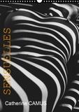 Catherine Camus - CALVENDO Art  : Sensuelles (Calendrier mural 2021 DIN A3 vertical) - Nus féminins dont la moitié avec jeux d'ombres (Calendrier mensuel, 14 Pages ).