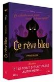 Liz Braswell - Ce rêve bleu - Et si Aladdin n'avait jamais trouvé la lampe ?.