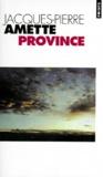 Jacques-Pierre Amette - Province.