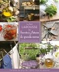 Elisabeth Andréani et Bénédicte Boudassou - Le petit Larousse des secrets et astuces de grands-mères.