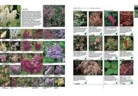 Larousse des plantes et fleurs de jardin