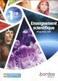 Thierry Cariat et Benoît Merlant - Enseignement scientifique 1re.