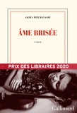 Ame brisée / Akira Mizubayashi | Mizubayashi, Akira (1951-....)