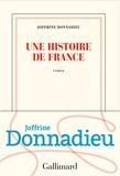 Une histoire de France / Joffrine Donnadieu | Donnadieu, Joffrine (1990-....)